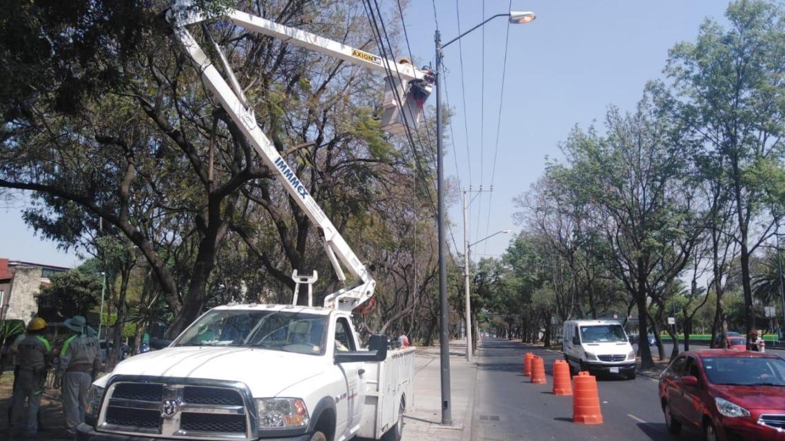 Fotografía: Alcaldía Tlalpan