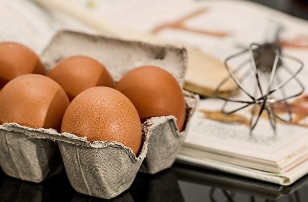 high proteins content of eggs