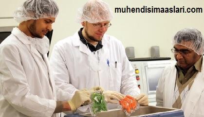 Gıda mühendisi maaşları