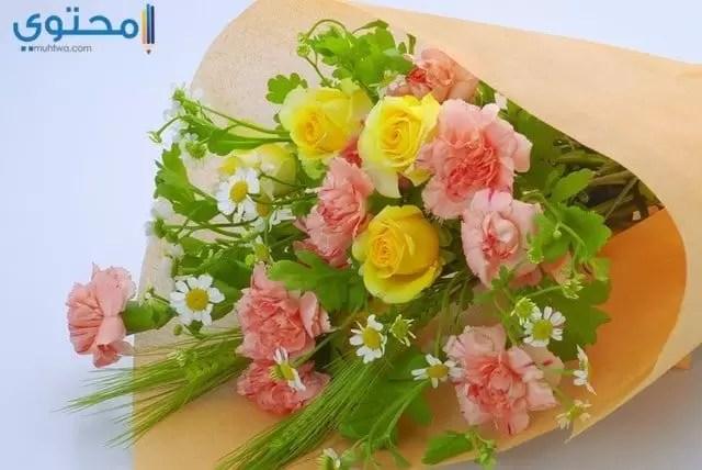 Types Yellow Flowers