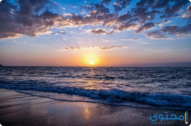 معنى رؤية الشاطئ في الحلم او المنام موقع محتوى