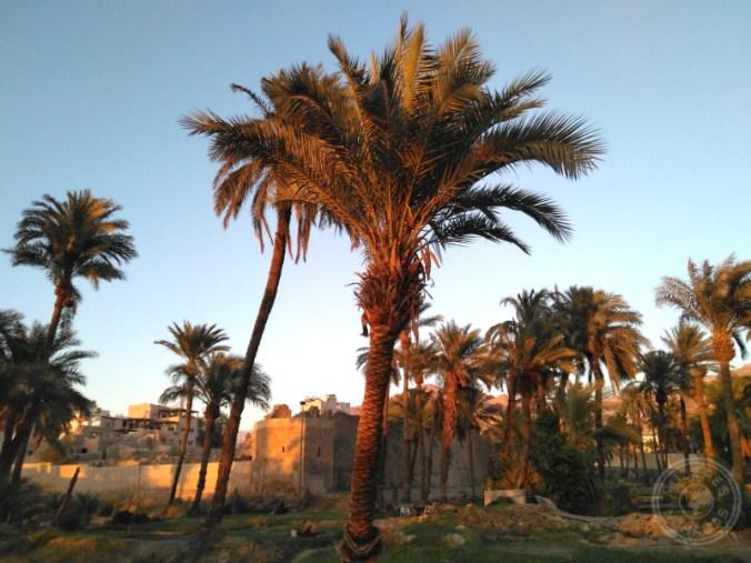 El Castillo de Áqaba.