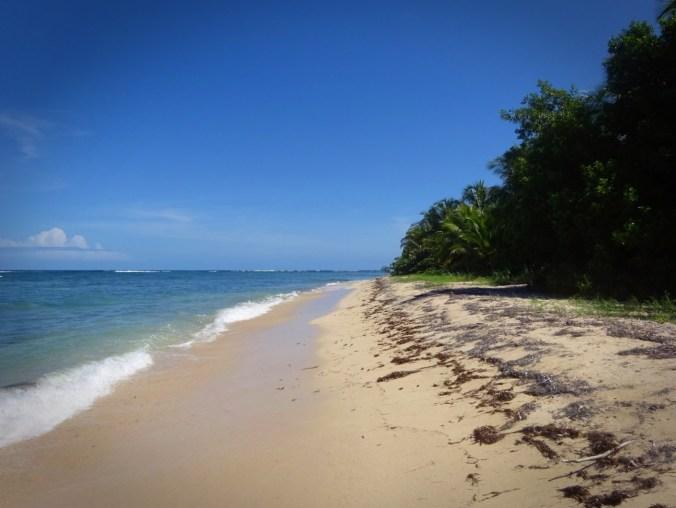 Panamá. Bocas del Toro.