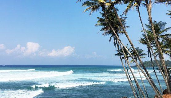 سری لنکا!ایک جادو نگری۔۔۔۔امتیاز  احمد/سفر نامہ