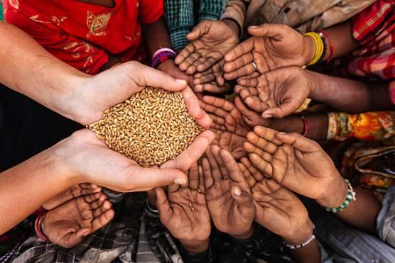 دنیا کے 23 مقامات پر خوراک کی شدید قلت پیدا ہو سکتی ہے، اقوام متحدہ