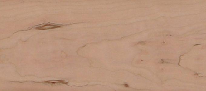 ブラックチェリーの木肌1