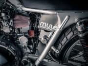 MULE-MOTORCYCLE-012 JPEG