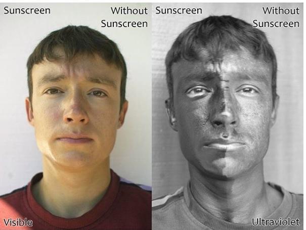 quantidade de protetor solar