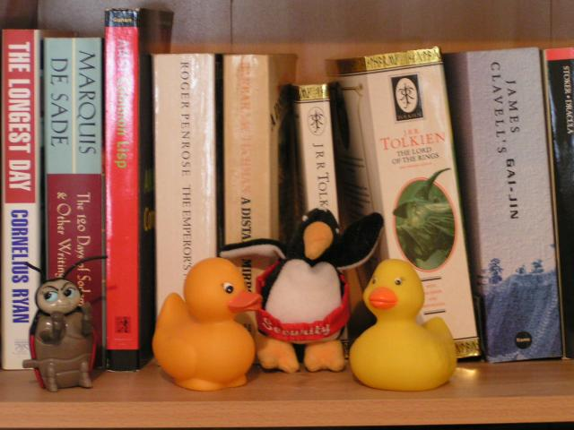 my rubber ducky (the camera works)