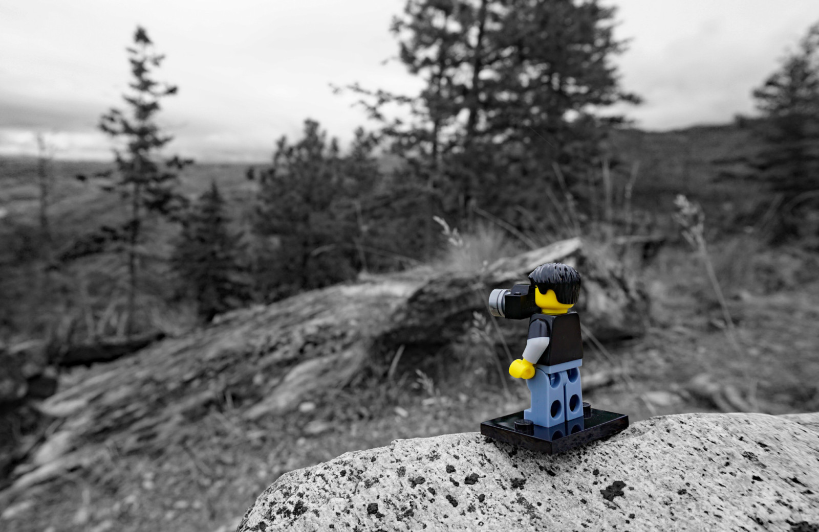 Lego Dave and the Hike