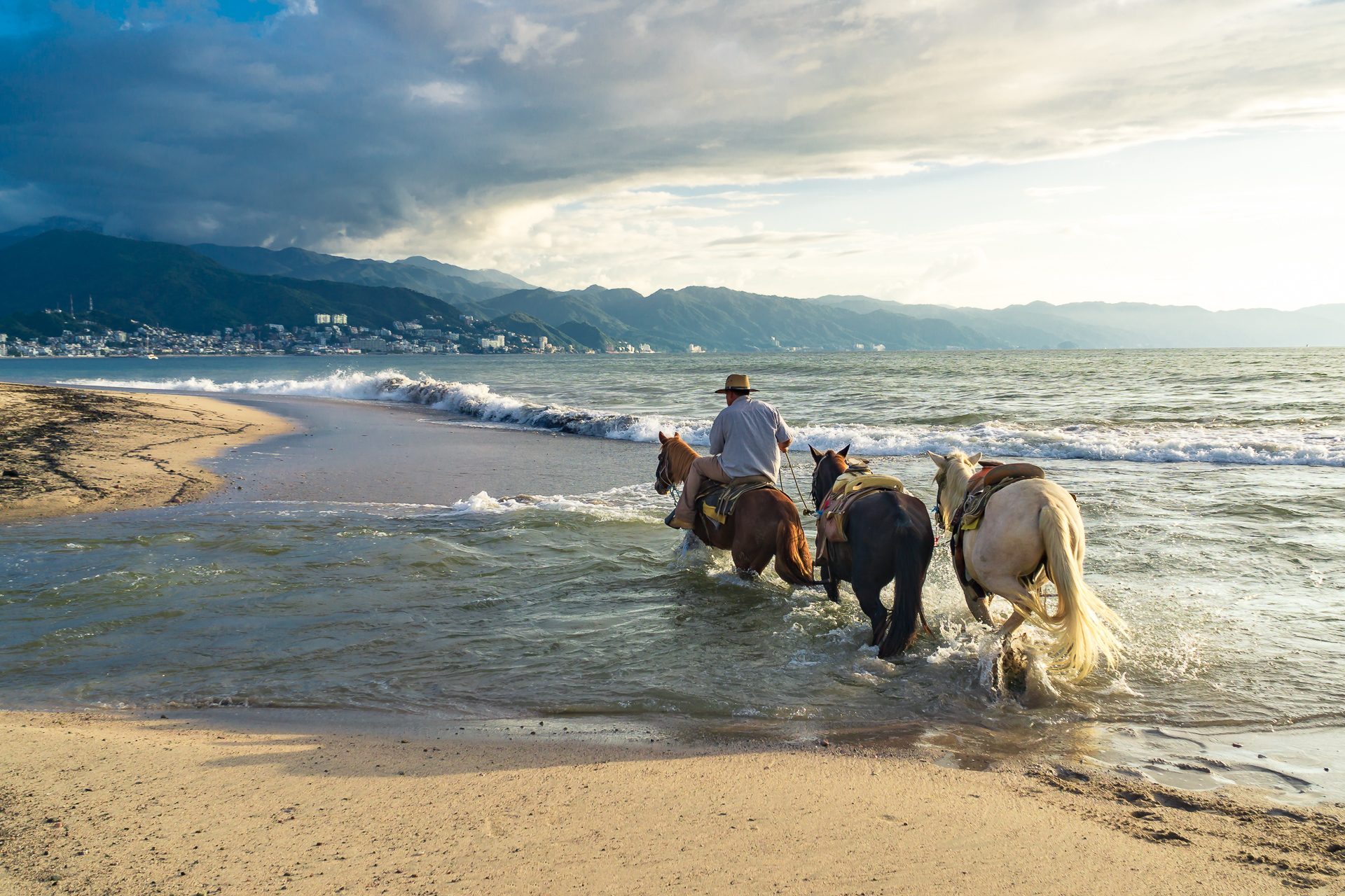 Horses in the Surf