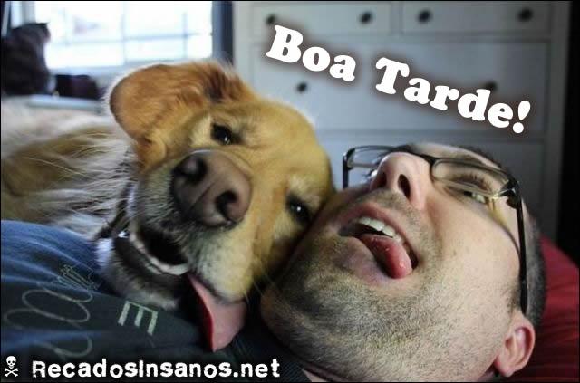 Boa tarde com cachorro mostrando a língua
