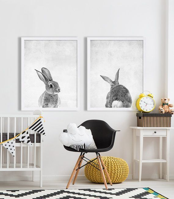 7be7f19f55dcd93dff60f77d52562783--baby-animal-nursery-baby-animals