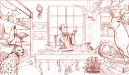 Alsa Ludo Projet d'illustration 31.08.2015