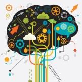 Brain processing 1