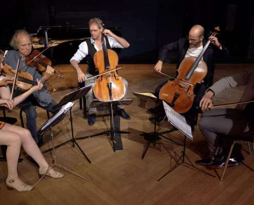 Dutch String collective band viool