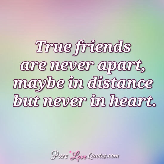 Tag Lasting Friendships Multiple ExperienceS Stunning Quotes About Lasting Friendship