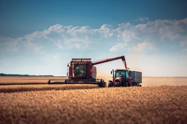Combine harvester agriculture machine harvesting golden ripe whe