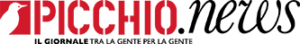 www.picchionews.it
