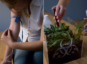 Life Cycle of a Common Weed (2007), Caitlin Berrigan. Performance documents. Photos by Alia Farid.