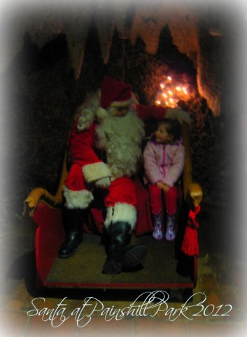 Painshill Park Santa 2012
