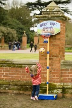 Charlecote Park, nest ball©National Trust Images John Millar
