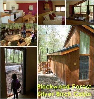 Blackwood Forest Silver Birch Cabin