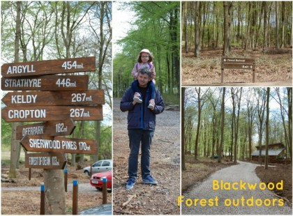 Blackwood Forest outdoors