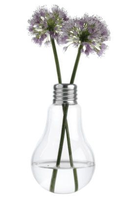 Edison Medium Bulb