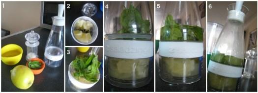 Salad Zinger mint and lemon dressing