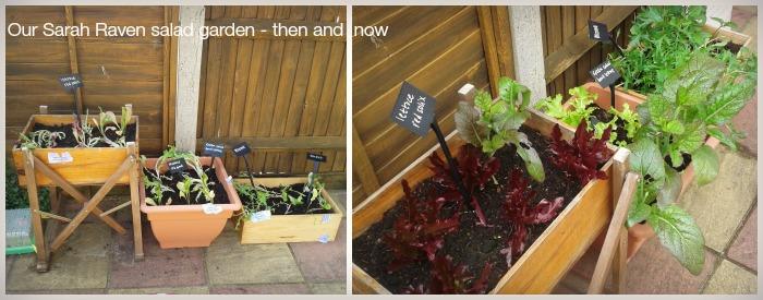Sarah Raven Salad Garden