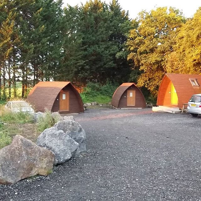 Wooden wigwams