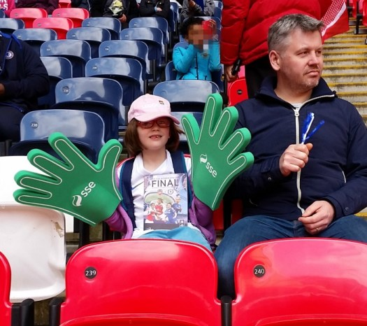 Wembley Stadium Women's FA Cup Final 2016 seats