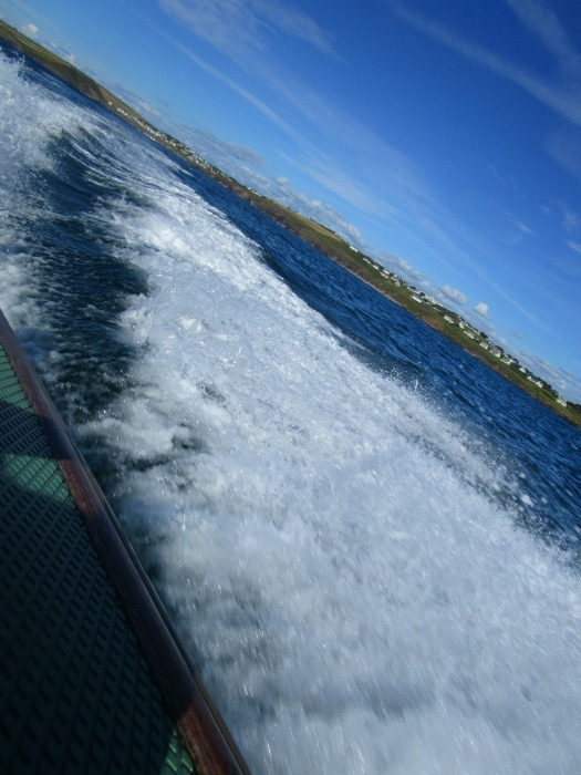Our summer - Padstow Speedboat