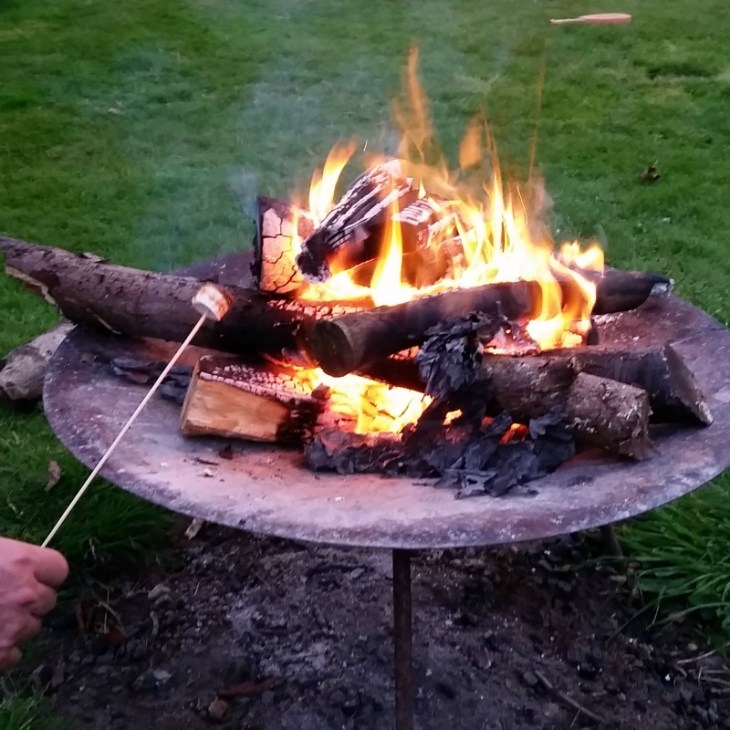 Toasting Marshmallows on an open fire