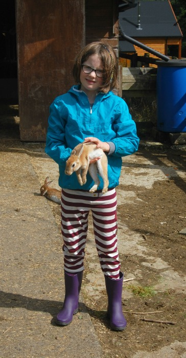 catching rabbits at coombe mill