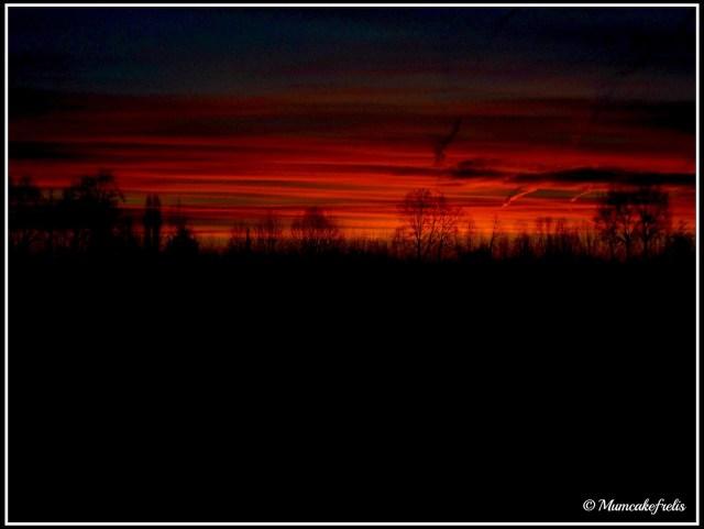 alba rossa in campagna