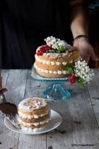 mtchallenge sweety naked cake