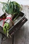 talli d'aglio cosa sono