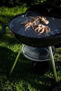 polpo grigliato su barbecue weber manomano 2 metodi