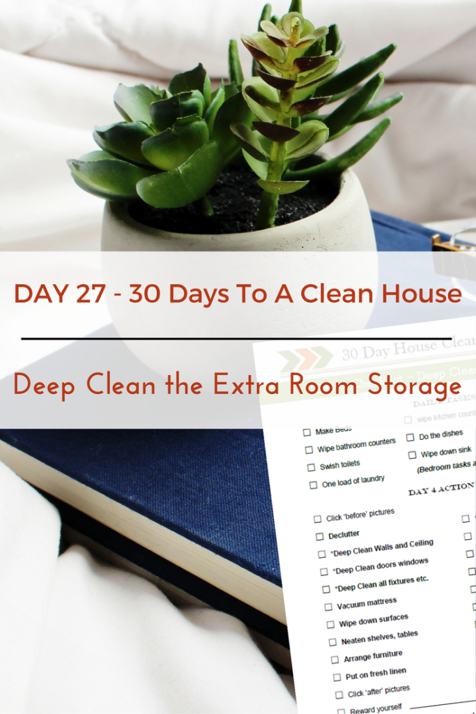 Deep Clean the Extra-Room Storage Units