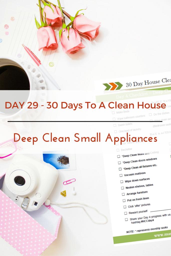Deep Clean Small Appliances