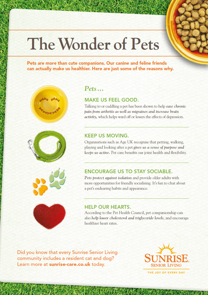 do you count your pets as a family member