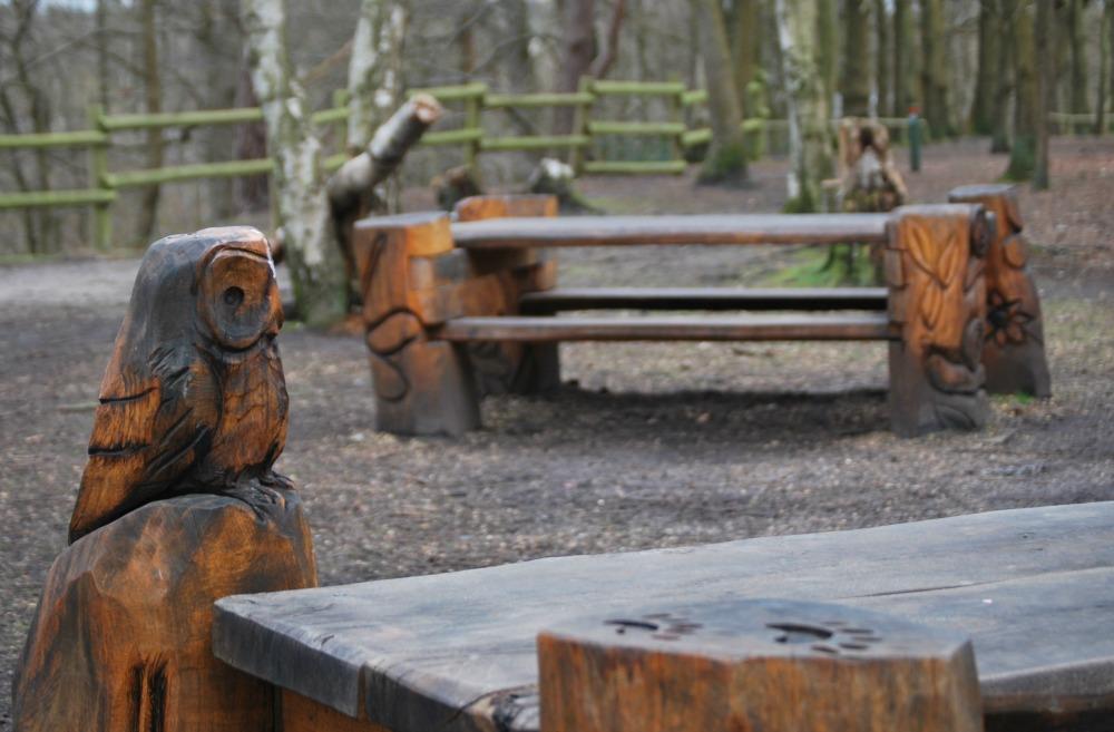 Fleet Pond Picnic tables