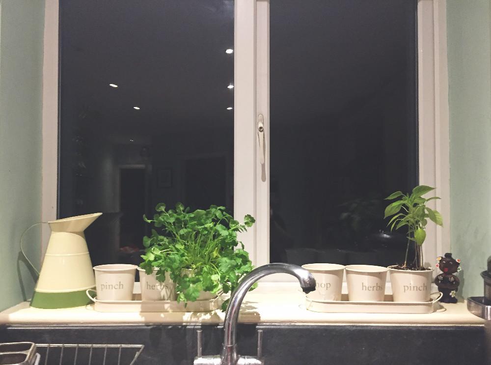 Window Wednesday Home