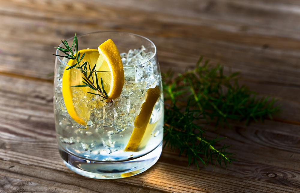 Why gin is the greatest drink ever