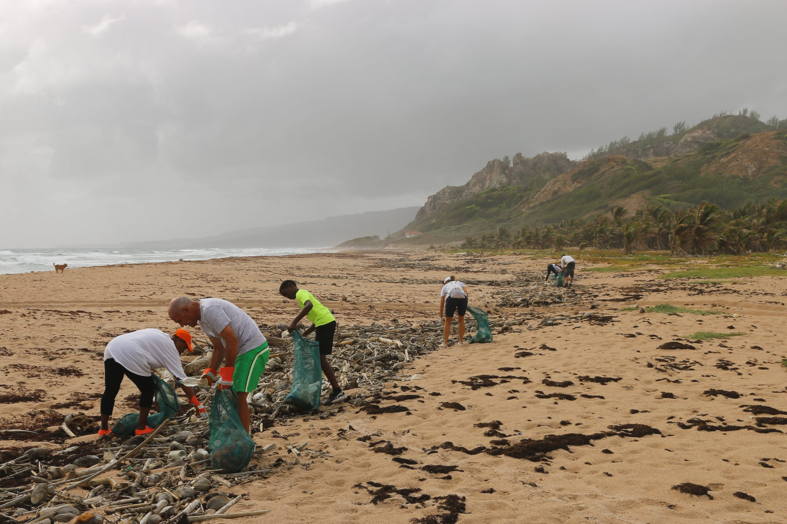 People collect rubbish from the foreshore of a beach