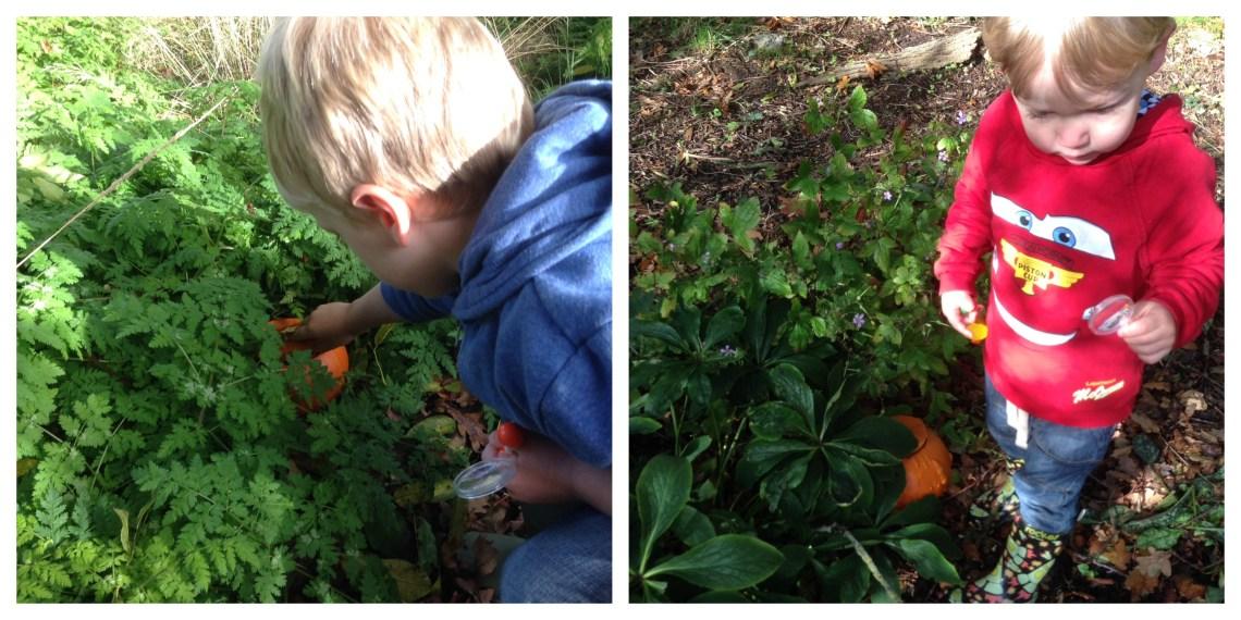 Pumpkinhunt2 Collage