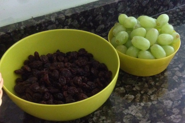 monkey poo & green 'apes (raisins and grapes(