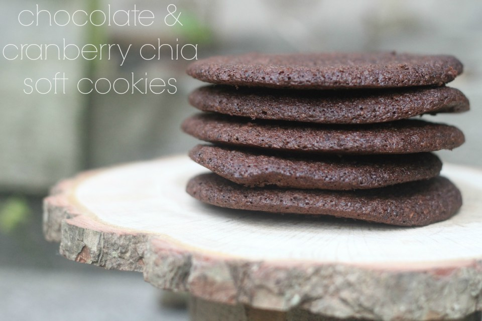 Chocolate & Cranberry Chia Soft Cookies